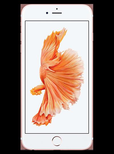 bf323ce4669 APPLE iPhone 6s Plus ROSE 32Go - SFR