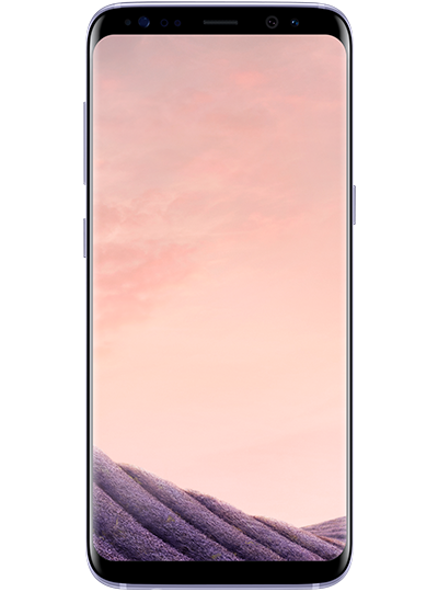 SAMSUNG Galaxy S8 gris